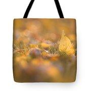 Autumn Ash Leaves Tote Bag