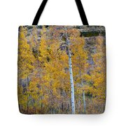Autumn Aspens Tote Bag by James BO  Insogna