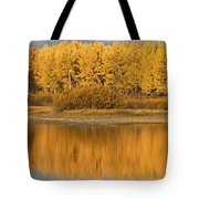 Autumn Aspens Reflected In Snake River Tote Bag by David Ponton