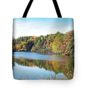 Autumn At Durand Tote Bag