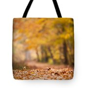 Autumn At Great Falls Tote Bag