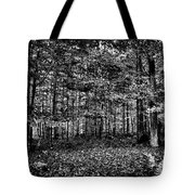Autumn At Mccauley Mountain IIi Tote Bag