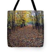 Autumn At Mono Cliffs Tote Bag