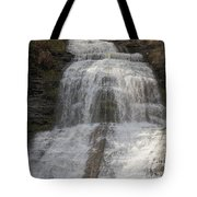 Autumn At Montour Falls Tote Bag