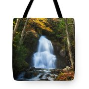 Autumn At Moss Glenn Falls Tote Bag