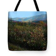 Autumn At Mt Rogers Tote Bag