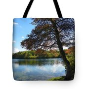 Autumn At Slough Pond Tote Bag