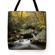Autumn At Stony Creek Tote Bag