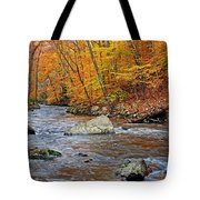 Autumn At The Black River Tote Bag