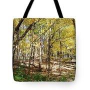 Autumn At Waterfall Glen Tote Bag