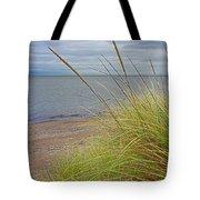 Autumn Beach Grasses Tote Bag