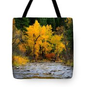 Autumn Beauty In Boise County Tote Bag