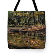 Autumn Beauty Scene Tote Bag