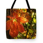 Autumn Begins 2 Tote Bag
