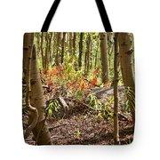 Autumn Begins Tote Bag