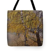 Autumn Bench Tote Bag