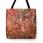Autumn Blaze Tote Bag by Kevin Croitz