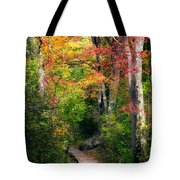 Autumn Boardwalk Tote Bag by Bill Wakeley