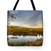 Autumn Borders Tote Bag