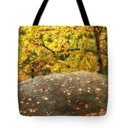 Autumn Boulder And Leaves Tote Bag