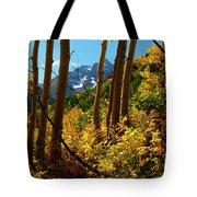 Autumn Brilliance 2 Tote Bag