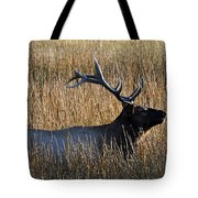 Autumn Bull Elk In Yellowstone National Park Tote Bag