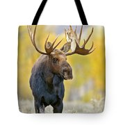 Autumn Bull Moose Tote Bag