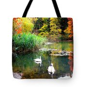 Autumn By The Swan Lake Tote Bag