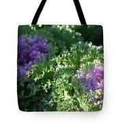 Autumn Cabbage Tote Bag