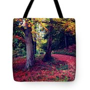 Autumn Carpet In The Enchanted Wood Tote Bag