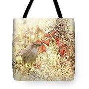 Autumn Catbird Tote Bag