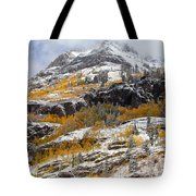 Autumn Clearning Tote Bag by Darren  White