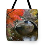 Autumn Color And Old Stone Arched Tote Bag