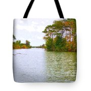 Autumn Color In Norfolk Botanical Garden  2 Tote Bag