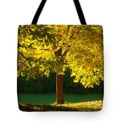 Autumn Colors 10 Tote Bag