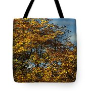 Autumn Colors 5 Tote Bag