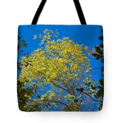 Autumn Colors Against The Sky Tote Bag