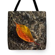 Autumn Colors And Playful Sunlight Patterns - Cherry Leaf Tote Bag