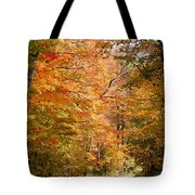 Autumn Colors - Colorful Fall Leaves Wisconsin IIi Tote Bag