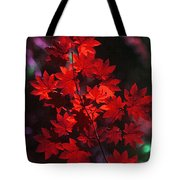 Autumn Colors Early Tote Bag