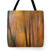 Autumn Colors Iv Tote Bag