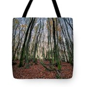 Autumn Colors In The Forrest Tote Bag