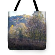 Autumn Colors Of Valley Forge Tote Bag by Bill Cannon