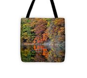 Autumn Colors Reflect Tote Bag