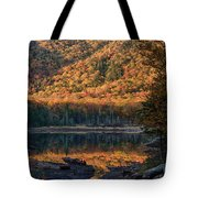Autumn Colors Reflected In Stream Tote Bag