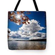 Autumn  Confidential  Tote Bag by Bob Orsillo