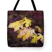 Autumn Contrast Tote Bag