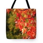 Autumn Cornered Tote Bag