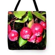 Autumn Crab Apples Tote Bag