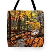 Autumn Creek In The Rain Tote Bag